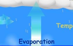 Evaporasyon
