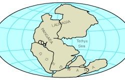 Kıtaların Oluşumu