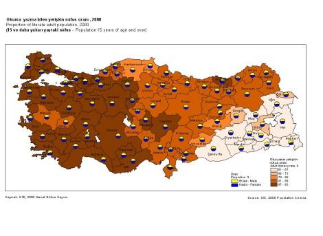 Nüfus yoğunluğu haritası
